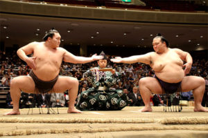 相撲は日本の国技ではない
